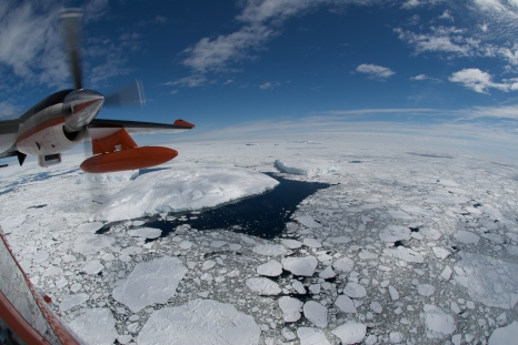 Flight out over pack ice, looking for Minke whales