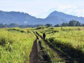 The Butterfly Effect: Reportage from PNG for Griffith Review 'Writing The Country'